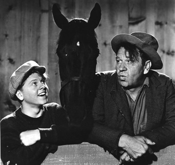 Andy Hardy Stablemates