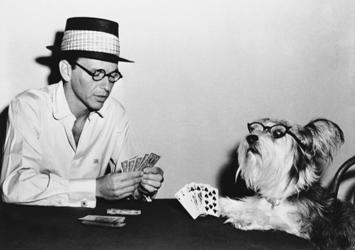 Frank Sinatra Playing Cards with A Dog
