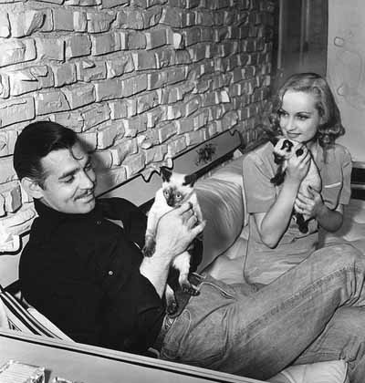 Carole Lombard and Clark Gable with Siamese Twin Cats