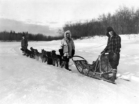 Dog Sled 1940s