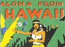 Hawaii Fantasies