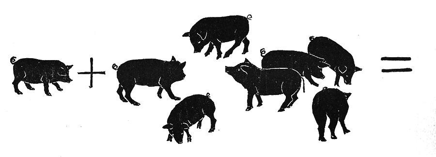 Pig Math!