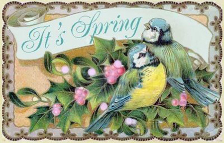 Spring Greetings Postcard